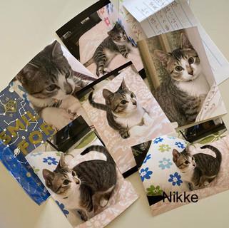 Nikke_real.jpg