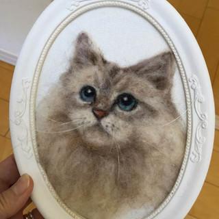 Cat_02.JPG
