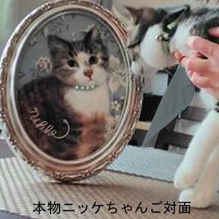 Nikke_02.jpg
