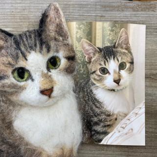 Hiromi作 オーダーメイドリアル猫ちゃん