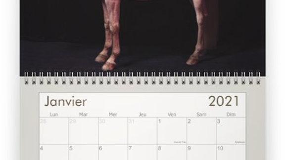 Calendrier Hors(e) Série 2021