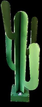Cactus 1.60m