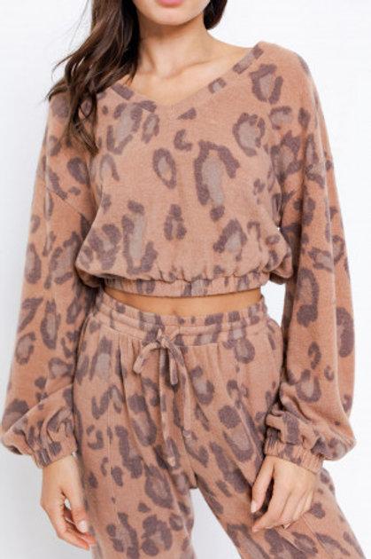 Cheetah Soft Top