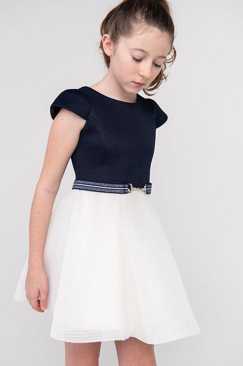 Cream/Navy Two Toned Swing Dress