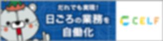 bnr_c_234-60.jpg