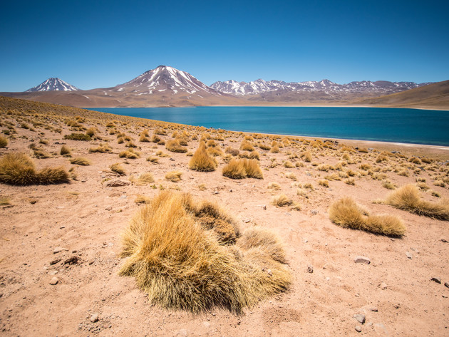 Lagoons Miscanti and Miñiques