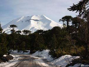 La Araucania Ski