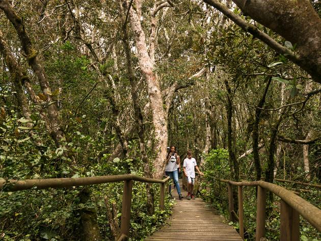 Parque National Fray Jorge