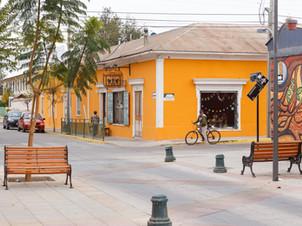 Vicuña Town
