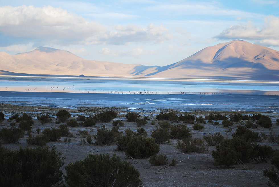16. Huasco Salt Flat.JPG