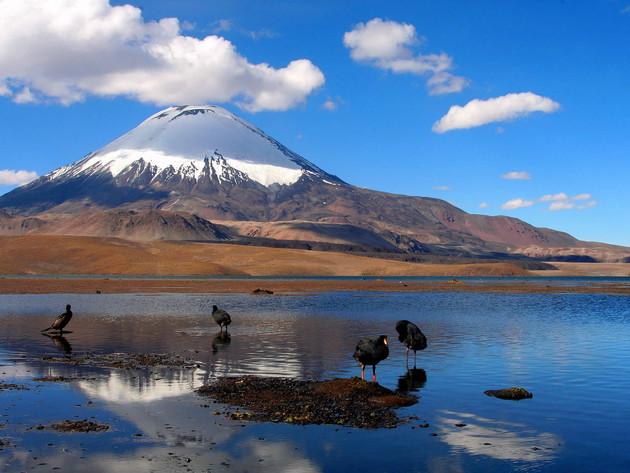 Chungara lake