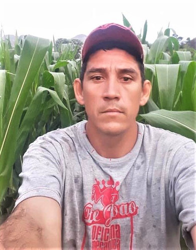 Chepe Ruiz in his cornfield in Monte el