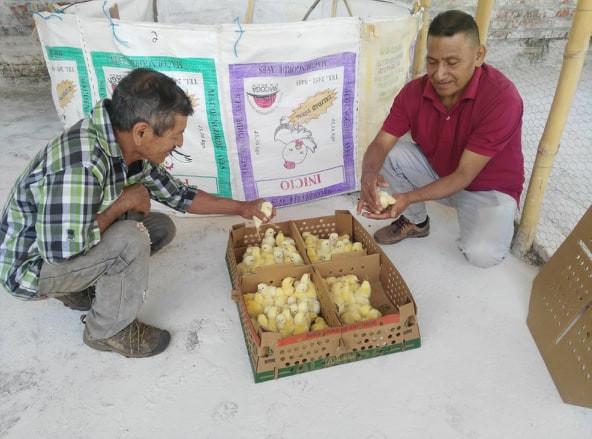 Atehuecia Community Coop