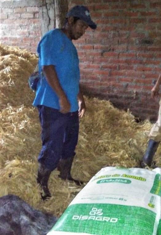 Fertilizer delivery in Monte el Padre