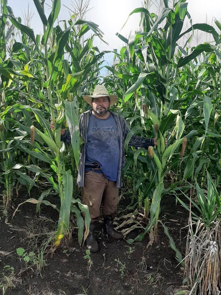 Don Juan in his cornfield in San Diego J