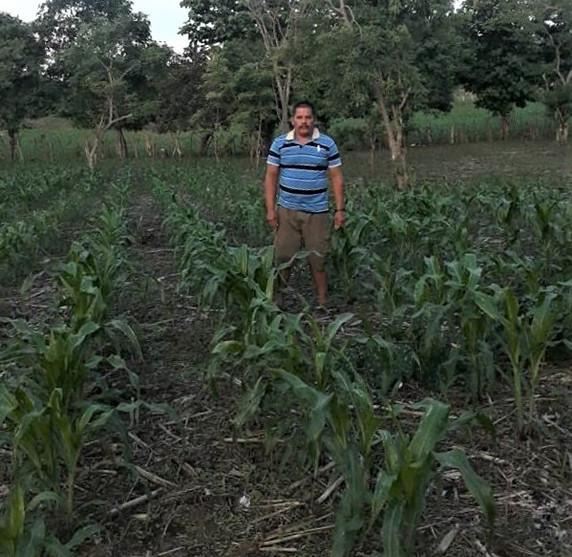 San Diego Farmer June 2020