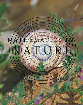 Mathematics in Nature