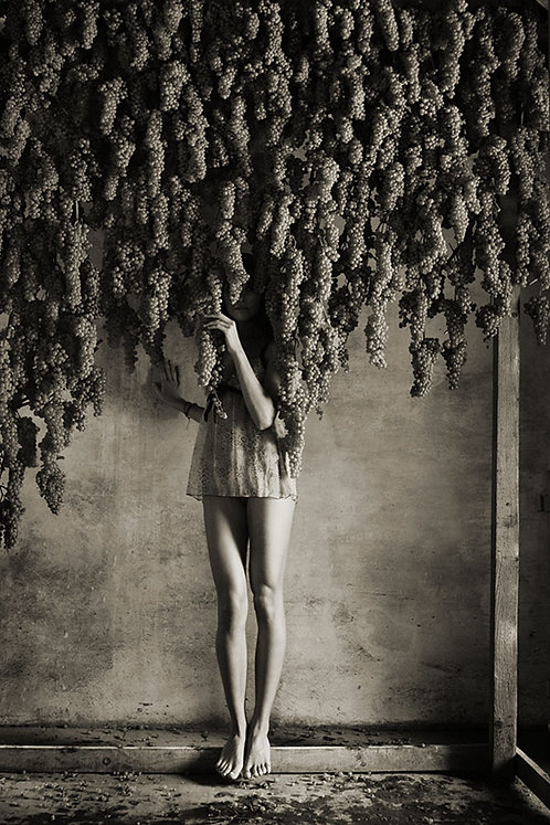 Legs under Grapes. 2006.