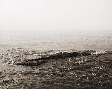 Wave #1.