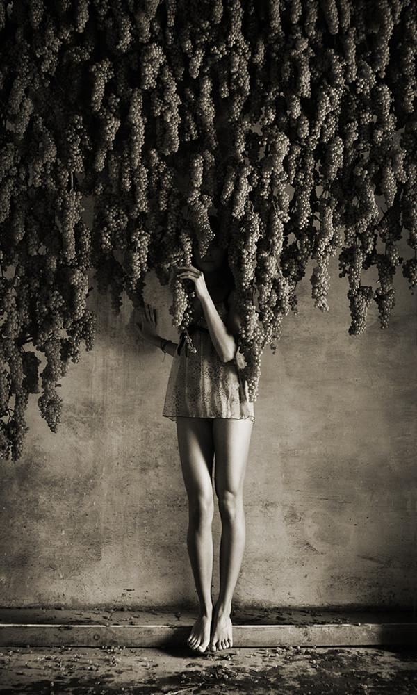 Legs under Grapes, 2006