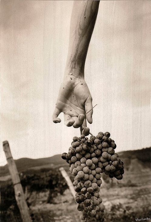 Hand with Grapes.  110 х 75 сm (wood). 2006/2017.