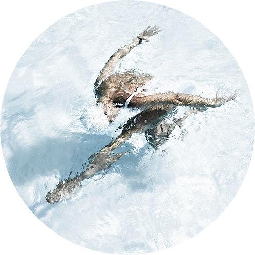 Лебедь/Swan. 150х150 cм. 2019.