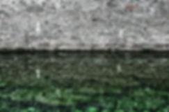 DSC02567-2-1gr-4proba-2+gr.jpg