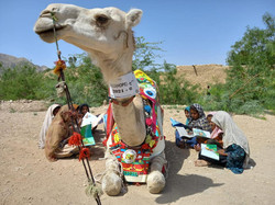 Umeed the Camel Library