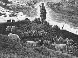 The Lonely Shepherd Of Brynmawr