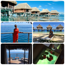 Stay in an over water bungalow