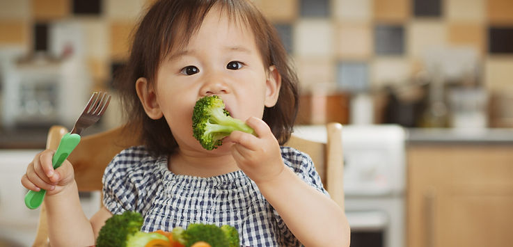 Toddler eatting broccoli