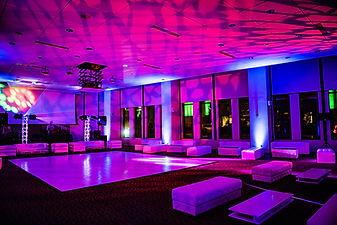 Washington DC Corporate Event Lounge Fur