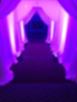 Pipe and Drape Dramatic Entrance Uplighting Corporate Mitzvah Wedding Marylad DC Virginia