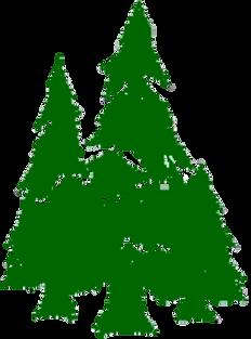 Evergreen logo_solid