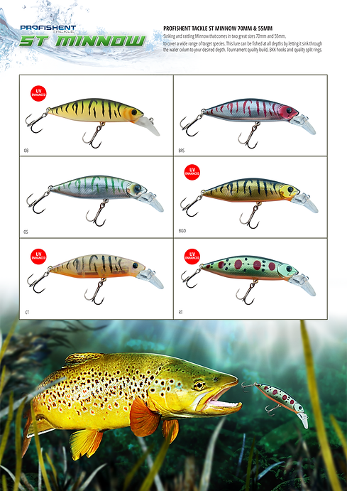 ST MINNOW page.png