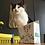 Thumbnail: Grow Your Own Cat-Grass Kit