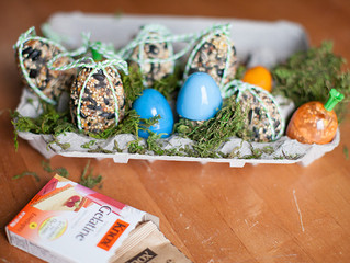 Birdseed Eggs to Make For Spring