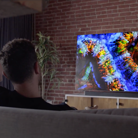 VIZIO P-Series 4K HDR Smart TV