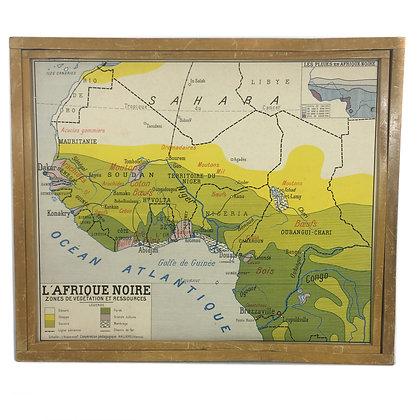 Affiche Afrique noire végétation et ressources / Afrique noire