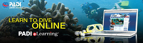 Sign up for PADI eLearning