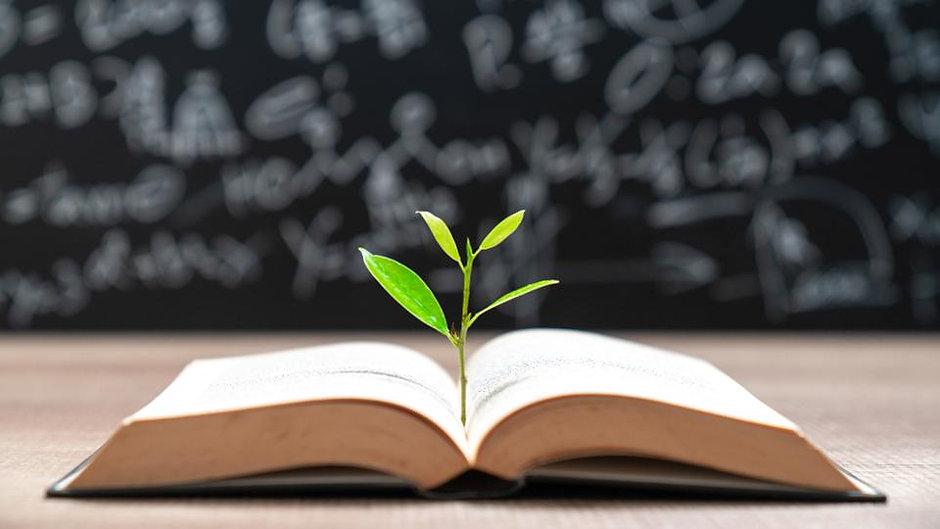 book plant.jpg