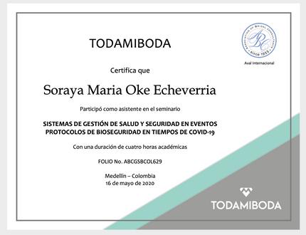 Certificado Participacion Seminario Gestión Salud y Seguridad en Eventos