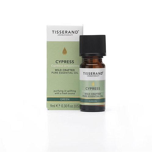 Tisserand Wild Crafted Cypress Essential Oil - 9ml