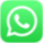 1024px-WhatsApp_logo-color-vertical.svg