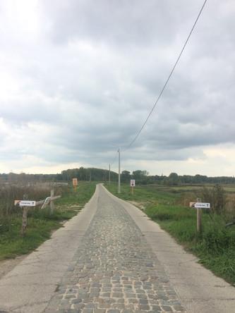 polder Kruibeke