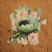 Paper Nest