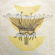 """Yellow Forms, 12""""x12"""", Ink drawing and r"""