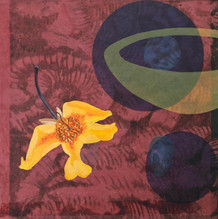 Midnight Garden, 30.5x30.5cm, litho, acylic and relief on dyed washi. $300.