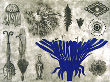 A Morphology Blue Blue Day