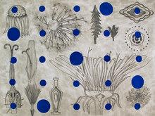 A Morphology Blue Rhythm and Variation